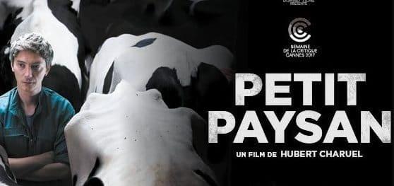 Petit Paysan – critique du film