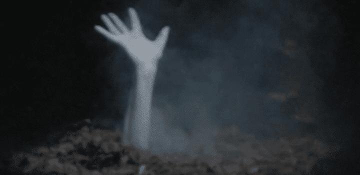 [Interview] Tous Zombies : la websérie documentaire qui déchire